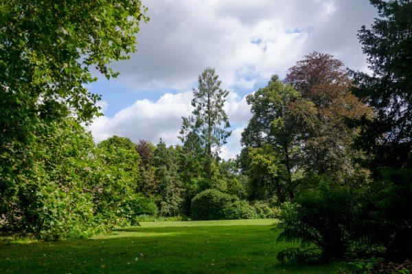 Kasteelpark_landgoed_kasteel_geldrop-3